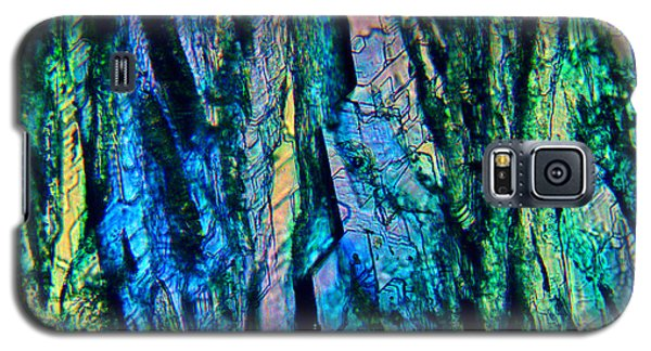 Fading Splendor Galaxy S5 Case