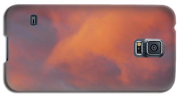 Falcon Cloud Galaxy S5 Case