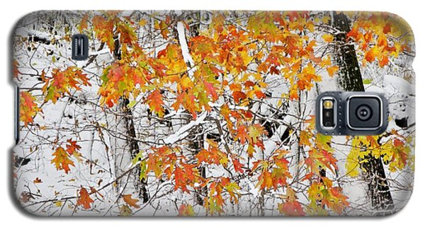 Fall And Snow Galaxy S5 Case