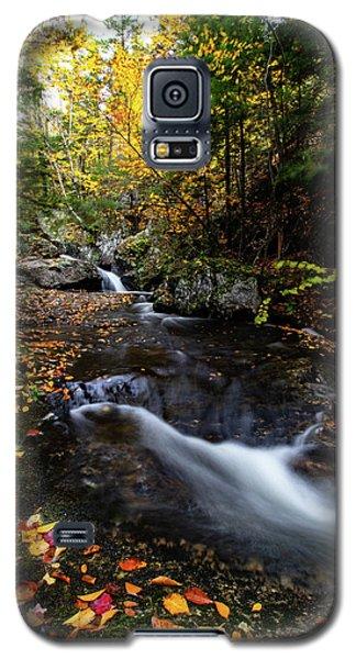 Fall Colors Sandwich New Hampshire Galaxy S5 Case
