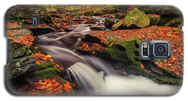 Fall Power Galaxy S5 Case
