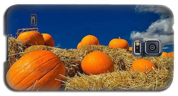 Fall Pumpkins Galaxy S5 Case