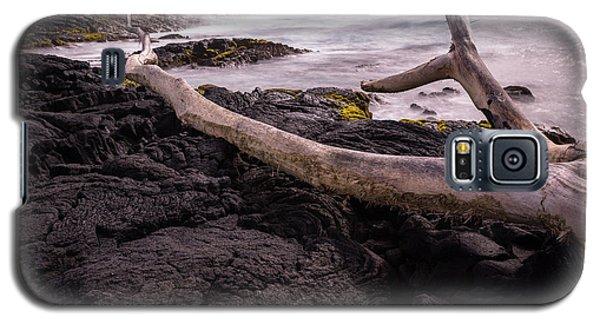 Fallen Tree At Punalu'u Beach Galaxy S5 Case