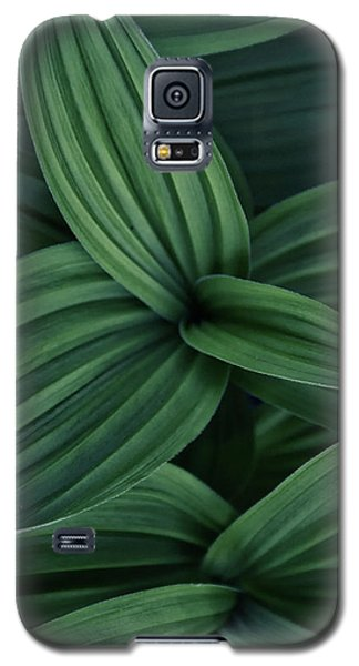 False Hellebore Plant Abstract Galaxy S5 Case