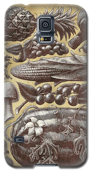 Farmer's Market - Sepia Galaxy S5 Case