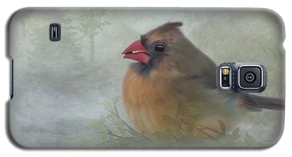 Female Cardinal With Seed Galaxy S5 Case