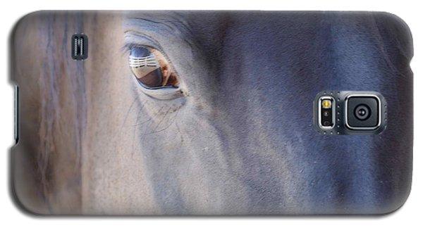 Fenced Foal Galaxy S5 Case