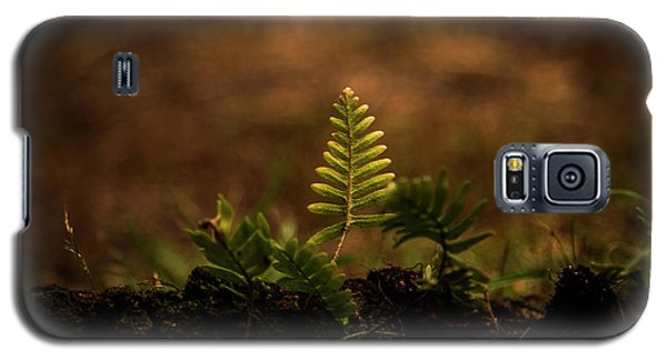 Fern Of Life Galaxy S5 Case