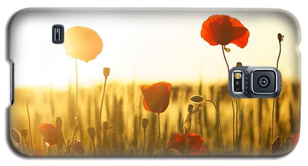 Field Of Poppies At Dawn Galaxy S5 Case