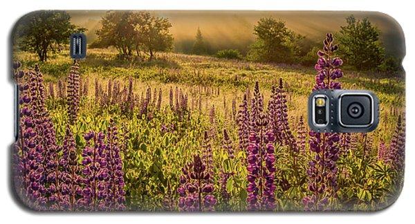Fields Of Lupine Galaxy S5 Case