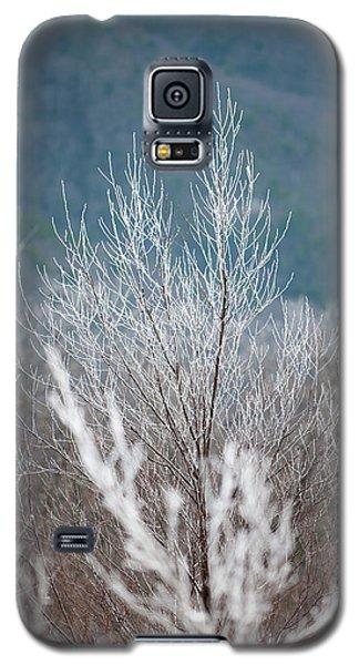 Fingers Of Hoarfrost Galaxy S5 Case