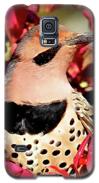 Yellow-shafted Flicker Galaxy S5 Case