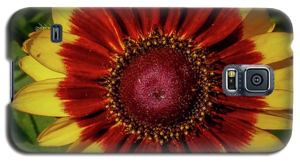 Firewheel Galaxy S5 Case