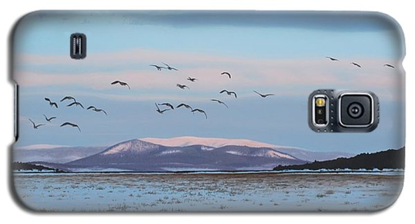 First Arrivals Galaxy S5 Case