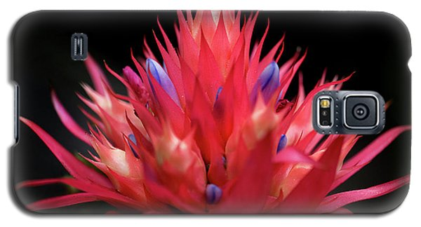 Flaming Flower Galaxy S5 Case
