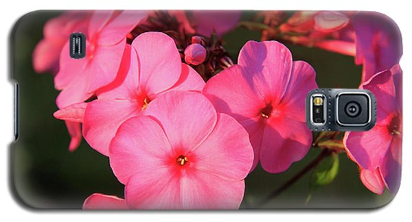 Flaming Pink Phlox Galaxy S5 Case