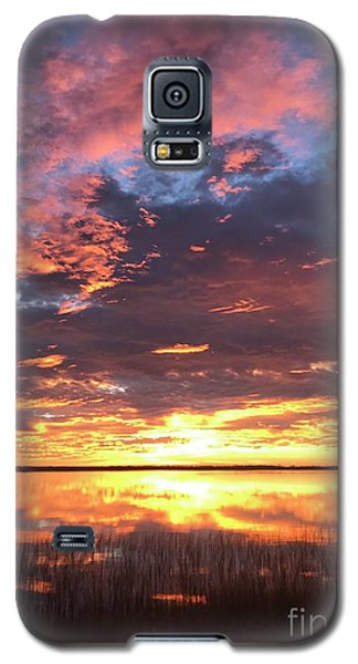 Flash Galaxy S5 Case