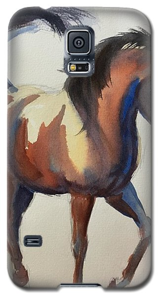 Flashing Bay Horse Galaxy S5 Case