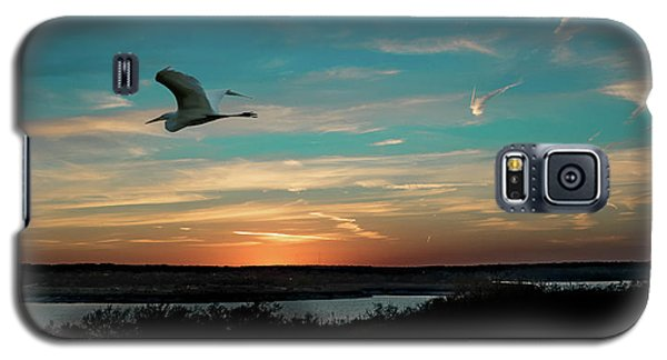 Flight To The Lake Galaxy S5 Case