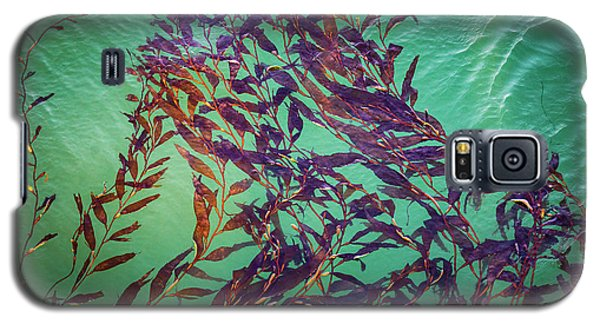 Floatin Kelp I Color Galaxy S5 Case