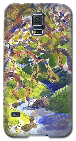 Flooded Trail Galaxy S5 Case