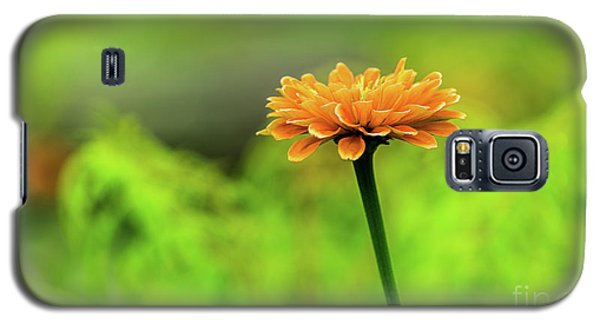 Flower Galaxy S5 Case