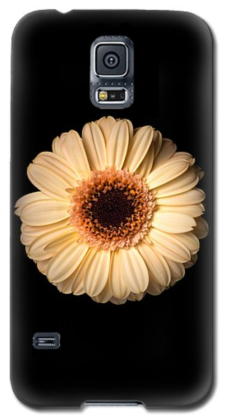 Flower Over Black Galaxy S5 Case