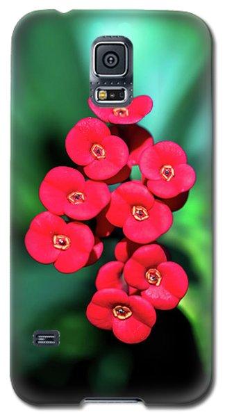Flower Parade Galaxy S5 Case