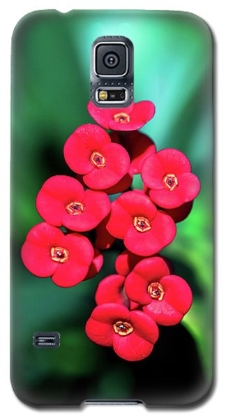 Flower Parade Galaxy S5 Case