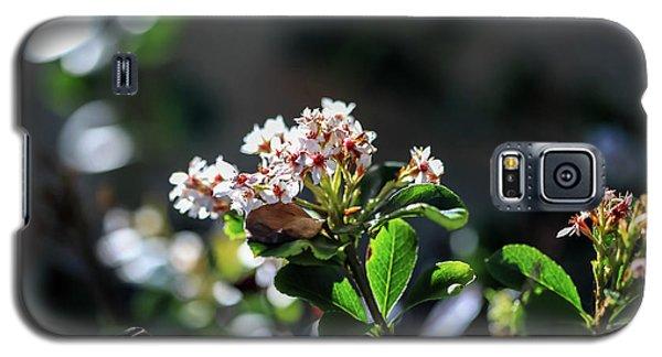 Beautiful Blooms Galaxy S5 Case