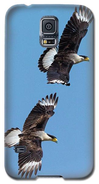 Flying Caracaras Galaxy S5 Case