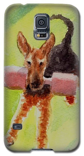 Flying Dale Galaxy S5 Case
