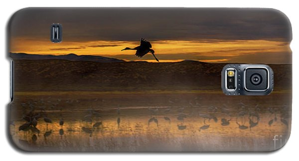 Flying Over Crane Pond Galaxy S5 Case