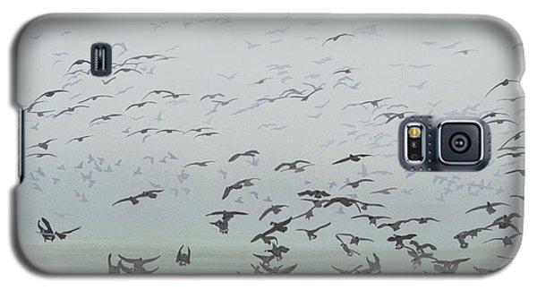 Foggy Arrival Galaxy S5 Case