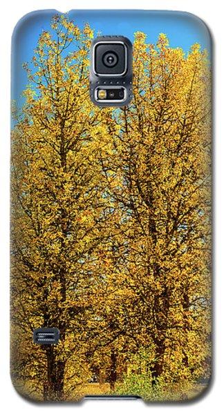 Foliage Galaxy S5 Case