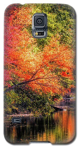 Foliage Over Forge Pond Galaxy S5 Case