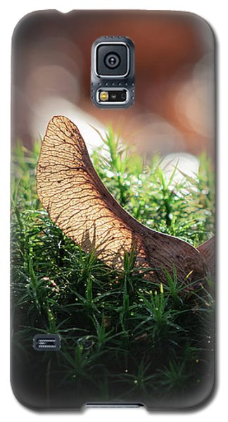 Forest Angel Galaxy S5 Case