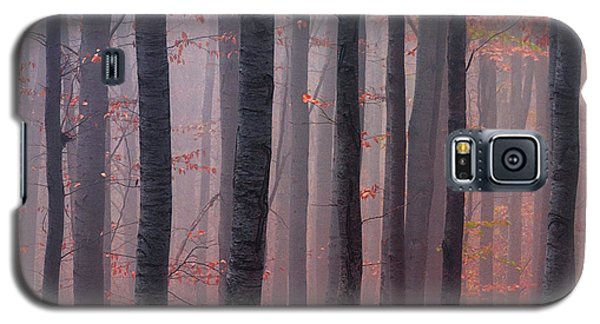 Forest Barcode Galaxy S5 Case