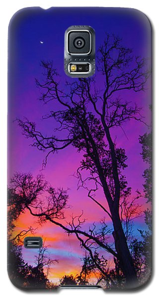 Forest Colors Galaxy S5 Case