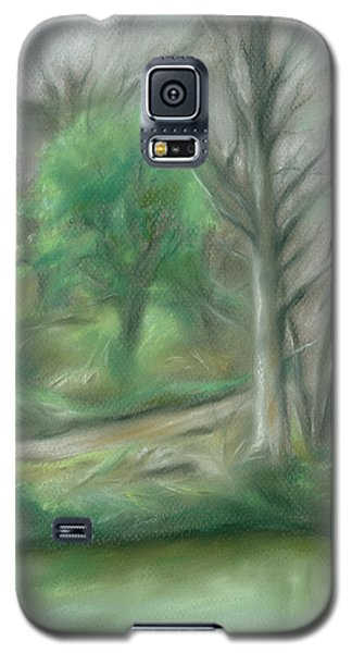 Forest Lane By A Pond Galaxy S5 Case