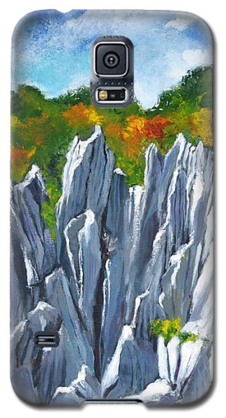 Forest Of Stones Galaxy S5 Case