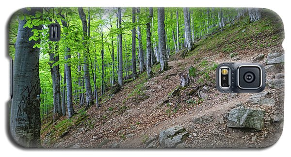 Forest On Balkan Mountain, Bulgaria Galaxy S5 Case