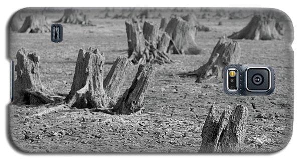 Forrest Galaxy S5 Case
