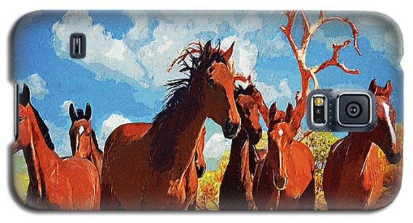 Free Spirits Galaxy S5 Case