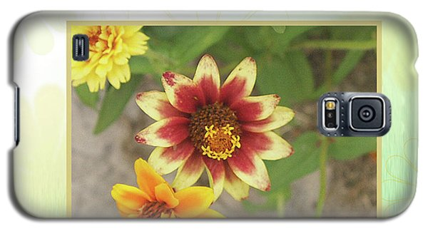Friendship, A Smiling Indian Blanket Flower  Galaxy S5 Case