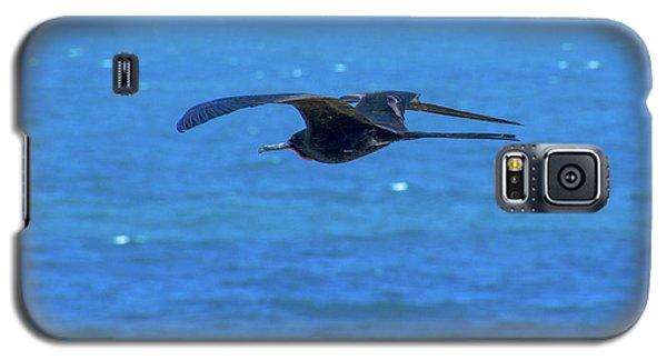 Frigatebird Galaxy S5 Case