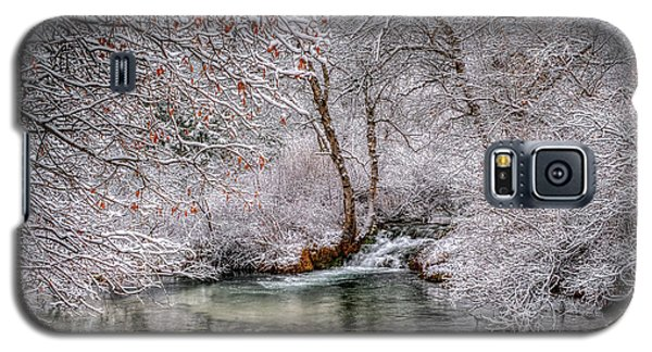 Frosty Pond Galaxy S5 Case