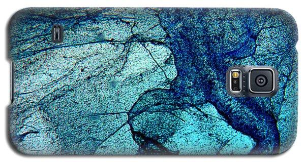Frozen In Blue Galaxy S5 Case