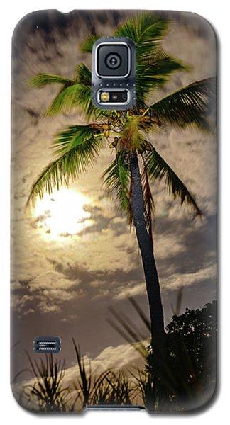 Full Moon Palm Galaxy S5 Case