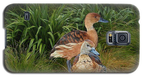 Fulvous Whistling Ducks  Galaxy S5 Case